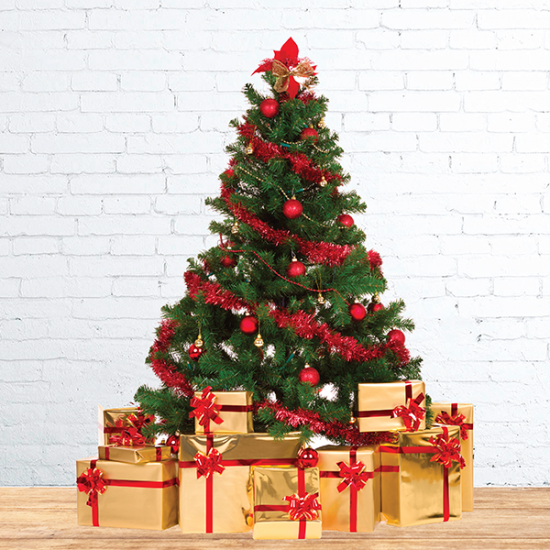 Nobel Fir Real Christmas Tree With Gold Gifts