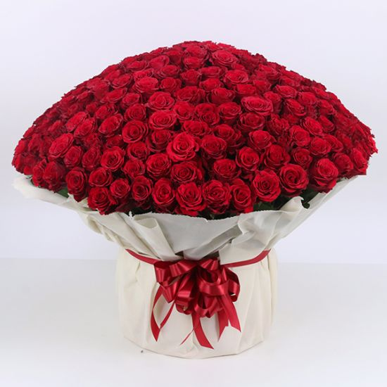 Bouquet of 500 Red Roses from online delivery shop in Dubai