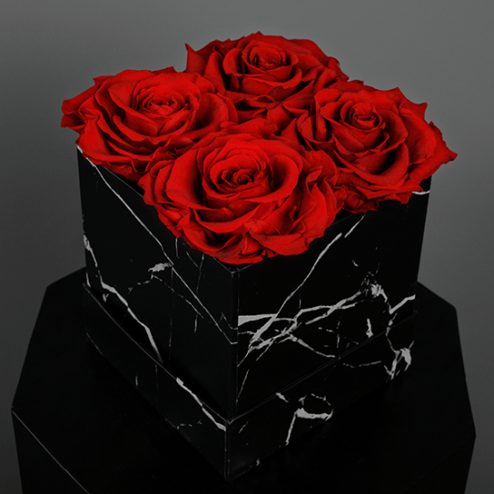 Long Lasting Preserved Red Rose in a Black Box