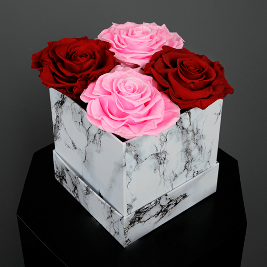 Long Lasting Preserved Rose Pink & Red in a White Box